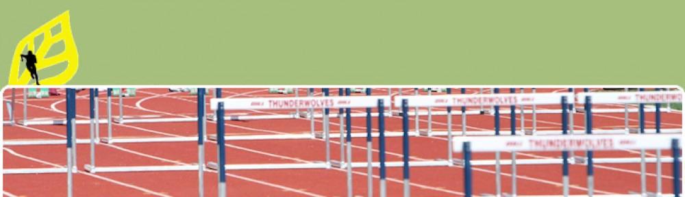 Stichting Apeldoorn Atletiekstad